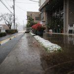 2016/11/24 9:37 佐倉市でも「異例、11月に降雪」の寒さ。