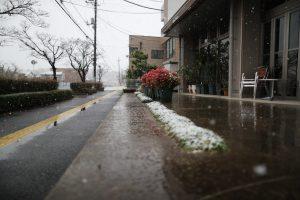 2016/11/24 9:37 いつまでこの雪は降るのか。