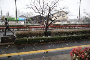 2016/11/24 9:37 白く綺麗、佐倉市 JR佐倉駅北口、彫刻通り