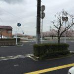 2016/04/05 09:51 まだ寒い春の天気に佐倉の桜並木