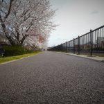 2014/04/02 10:16 今年も佐倉 高崎川 城南橋横の桜