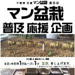 盆栽 Bonsai 盆景 분재