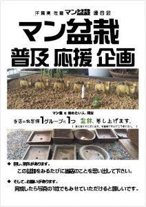 sakura_mambonsai_view